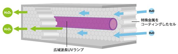 NCCセルの構造